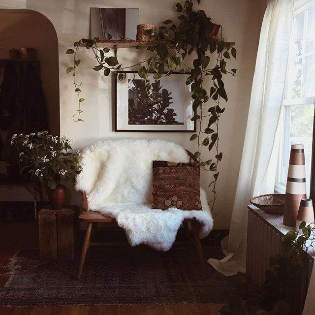 forestbound interior Pinterest Sheepskin throw, Hearths and Moon