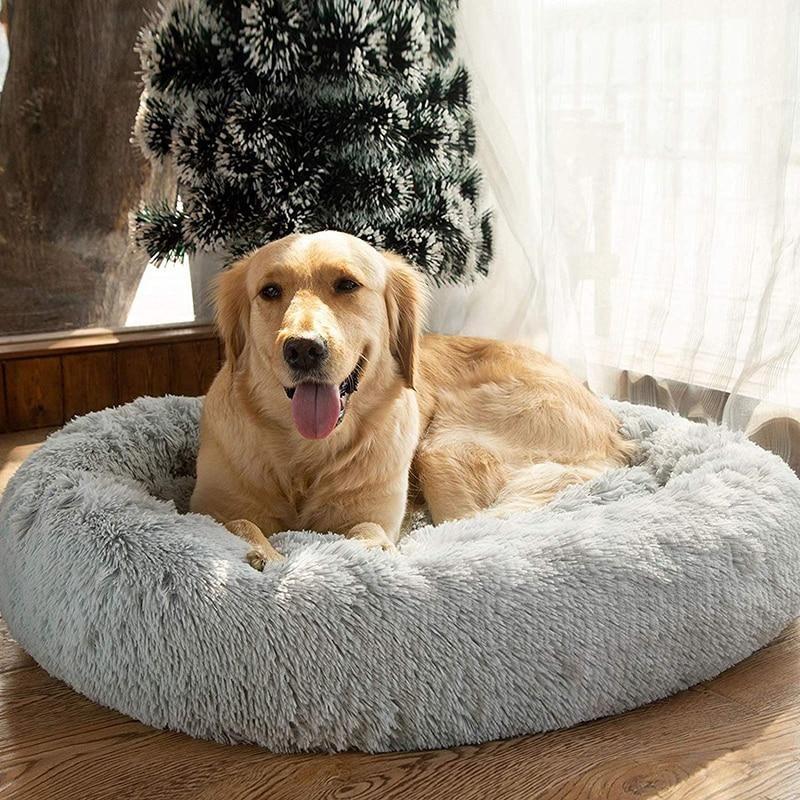 Petcomfort S Long Lasting Plush Pet Bed Dog Cat Cool Dog Beds Dog Bed Large Round Dog Bed