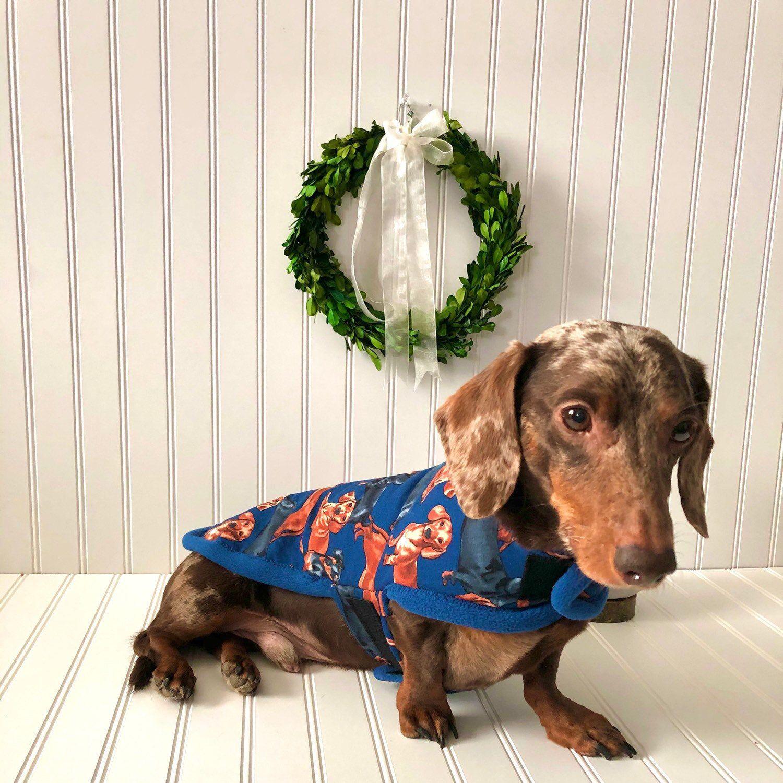 Miniature Dachshund Chiweenie Fleece Dog Coat Fit Small Dogs