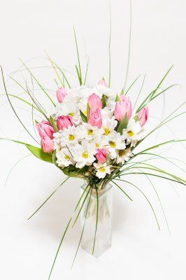 Jarní kopretiny s růžovými tulipány