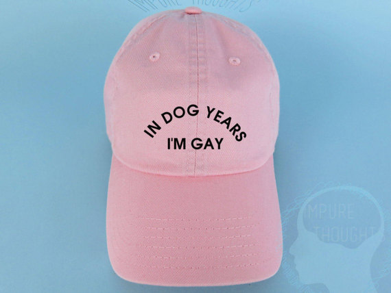 a1dd87bb In Dog Years I'm Gay Dad Hat Embroidered Baseball Cap Low Profile ...