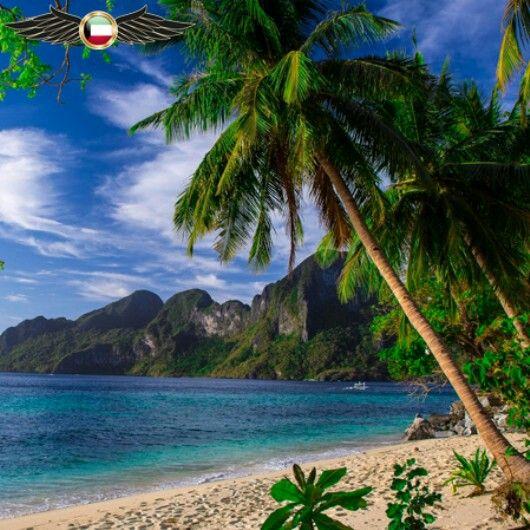 جاء في الترتيب الاول 1 Palawan Island Philippine 1 جزيرة بالاوان الفلبين بالاوان هي جزيرة ومقاطعة في الفلبين Natural Landmarks Landmarks World