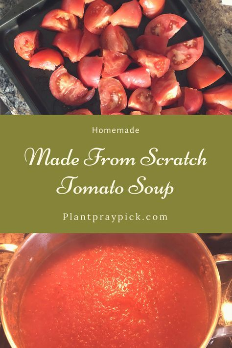 |Quick and Easy Made From Scratch Tomato Soup|