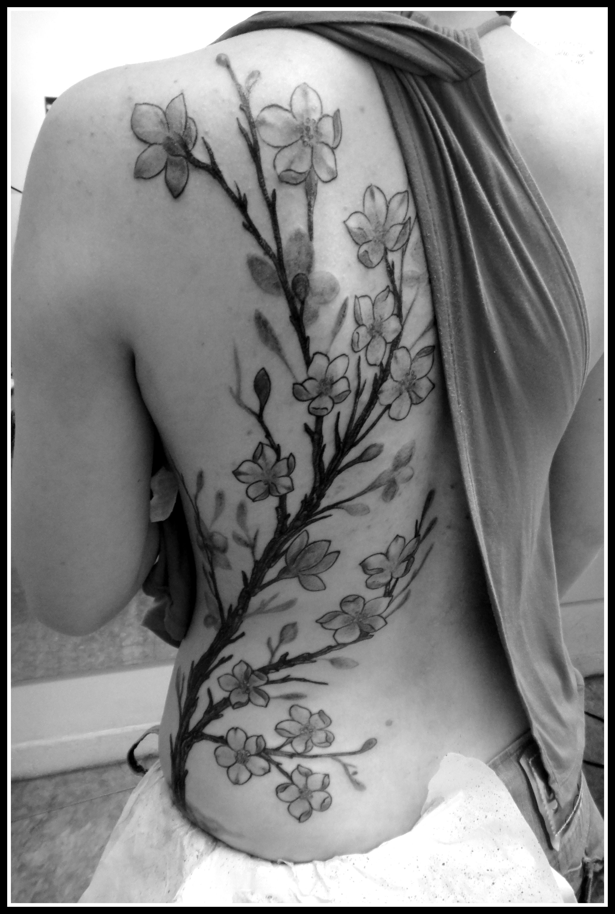 Tree Tattoo Tattoo Sakura Blackandgrey Back Tree Tattoo Tattoo Sakura Blackandgrey Back Tree Tattoo Back Cherry Tree Tattoos Tree Tattoo Arm