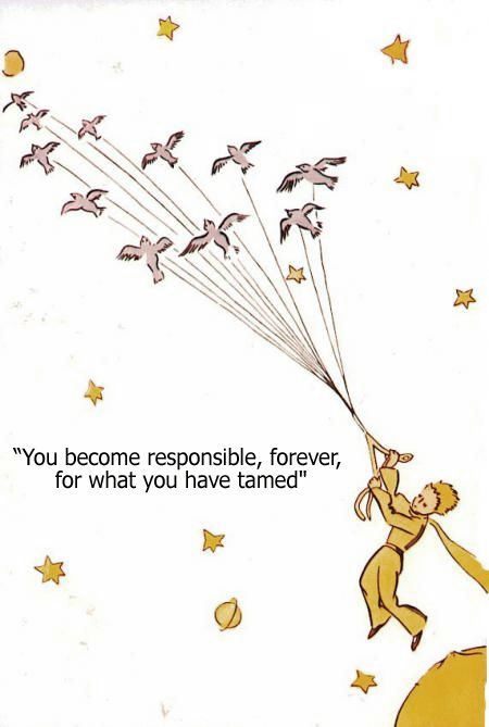''You become responsible, forever, for what you have tamed'' ~ quote from 'The Little Prince'