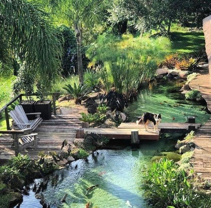 Traumhinterhof Backyard Dream Woodland Mein Blog Pool Im Garten Ba Gartendeko Gartendesign Ga Dream Backyard Ponds Backyard Backyard