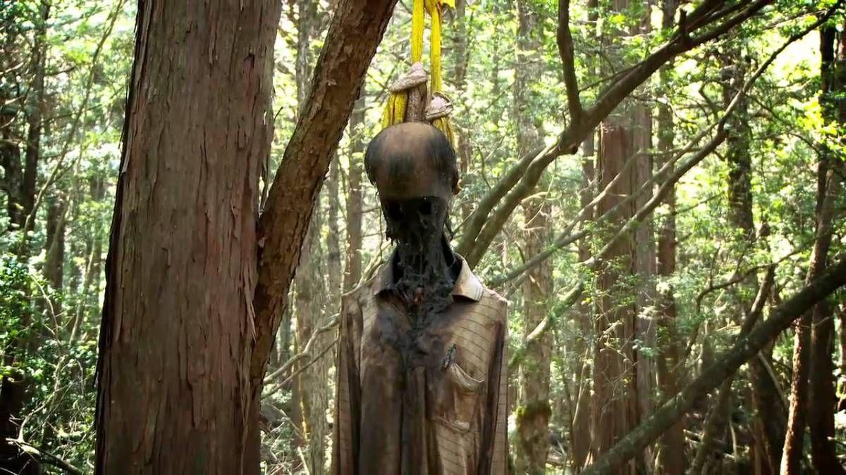 Aokigahara, o bosque dos suicidas