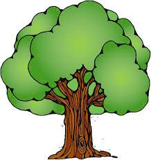Resultado De Imagen Para Arbol Verde Dibujo Arte De Arboles Dibujo De Arbol Dibujos De Arboles