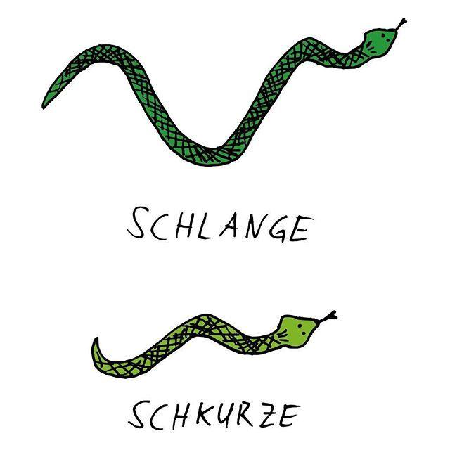 Achtung, es wird SEHR, sehr flach... #Schlange #lange #kurze #Schkurze #Wortspiel #extrem #flacher #Witz #spontane #Idee