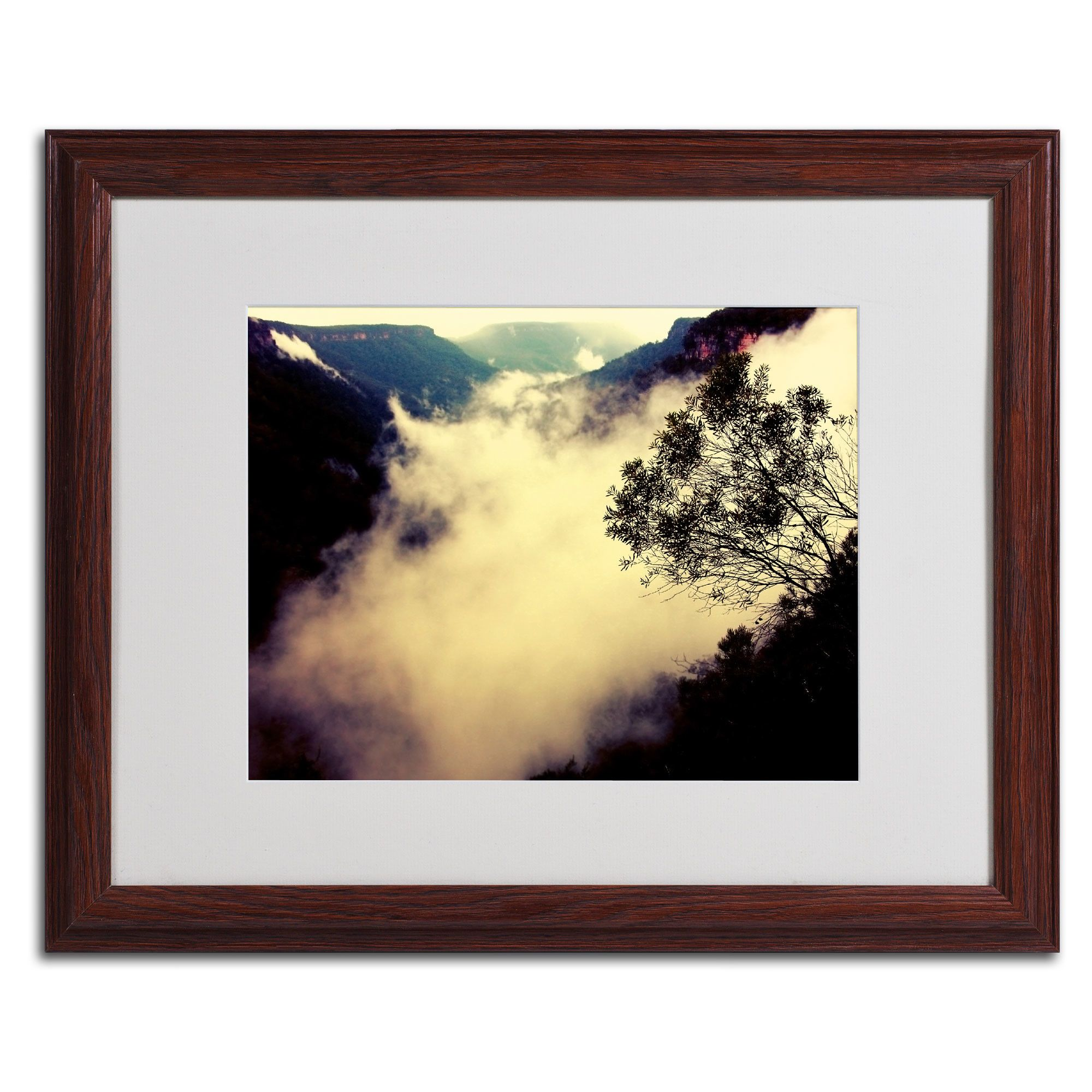 Valley of Light by Beata Czyzowska Young Matted Framed Photographic ...