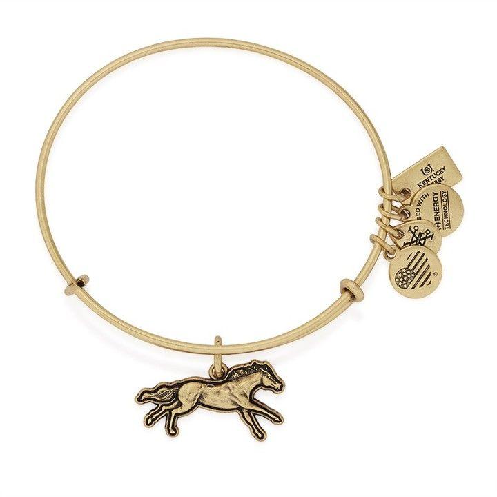 521e646e0505bd Victorious Charm Bangle | Products I Love | Alex, ani bracelets ...