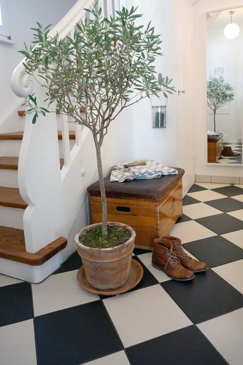 neue aufbewahrungskiste im flur haus pinterest olivenbaum flure und pflanzen. Black Bedroom Furniture Sets. Home Design Ideas