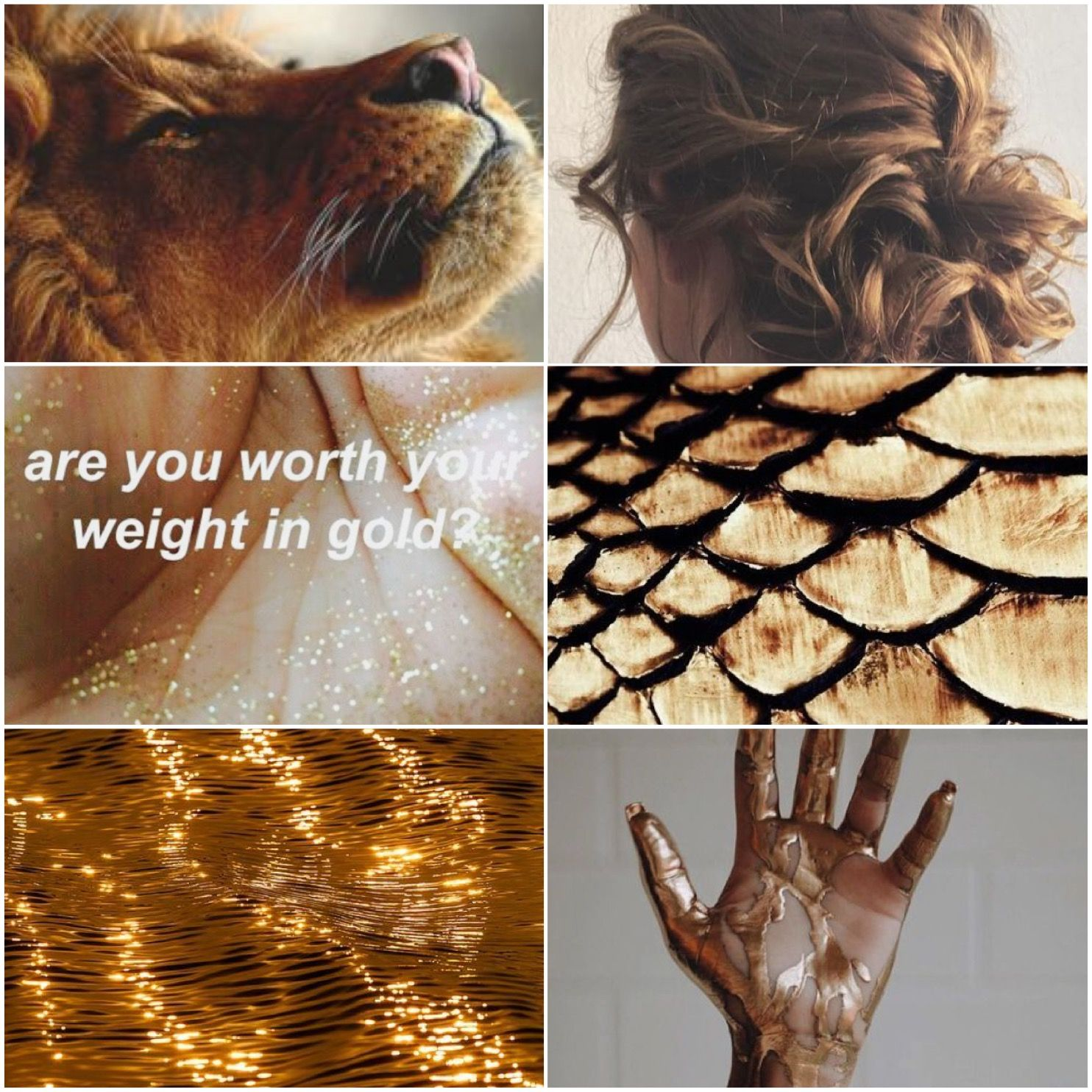 Leo Aesthetic Made By Mentalityoffandoms On Tumblr Leo Zodiac Leo Aesthetic Collage