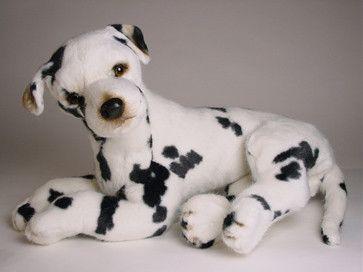 Rascal Great Dane Harlequin Animals Dogs Dalmatian