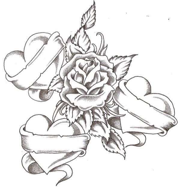 Rose Vine Coloring Pages Portraits