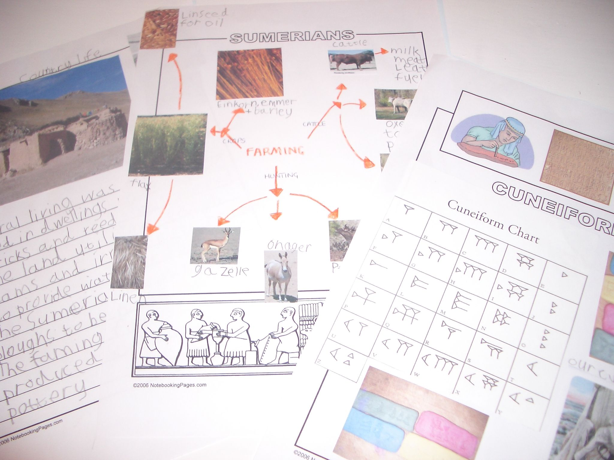 Mesopotamia projects and writing assignments Looking Back