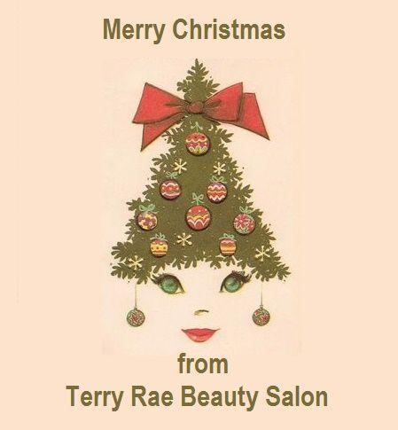 Christmas Beauty Salon.Merry Christmas From Terry Rae Salon In Las Vegas Nv Hair