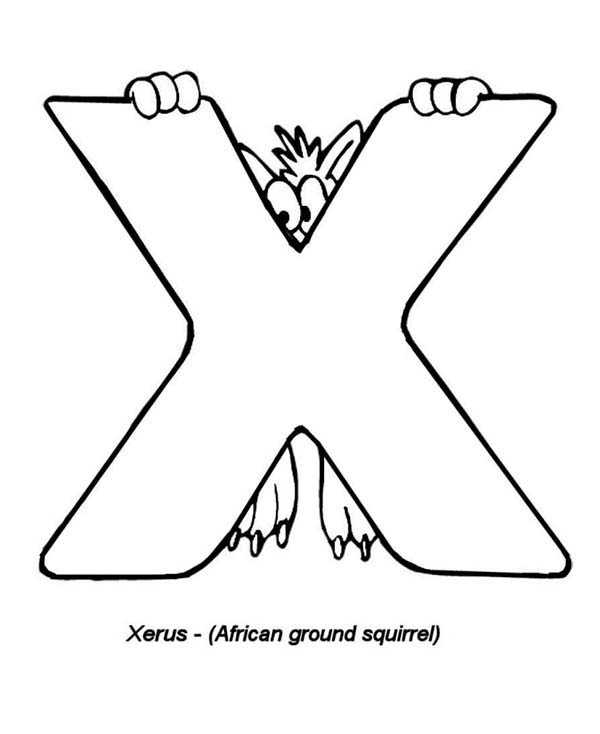 Xerus The African Ground Squirel For Letter X Coloring Page Bulk Color Coloring Pages Lettering Coloring Pages For Kids