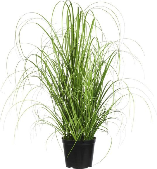 Grasbündel Kunstpflanze bei mömax günstig online bestellen