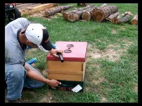 ▶ Making a Bee Vac - YouTube