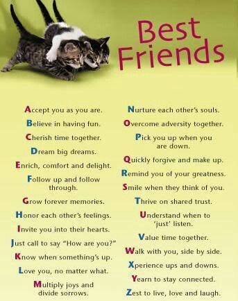 A to z best friend list | Friends ○♥○ | Best friend quotes, Best