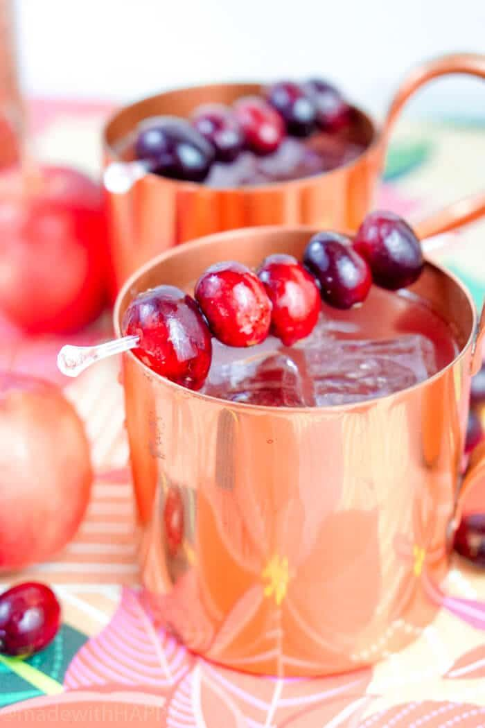 Cranberry Apple Mule Cocktail Holiday Party Cocktail Ideas