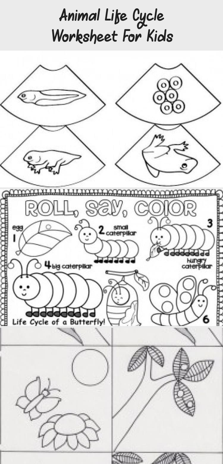 Life Cycle Butterfly Worksheet 1 Toysworksheetkindergarten Toysworksheetpreschool Toysworksheetprintables Toysworksheetforkids Free printable butterfly worksheets