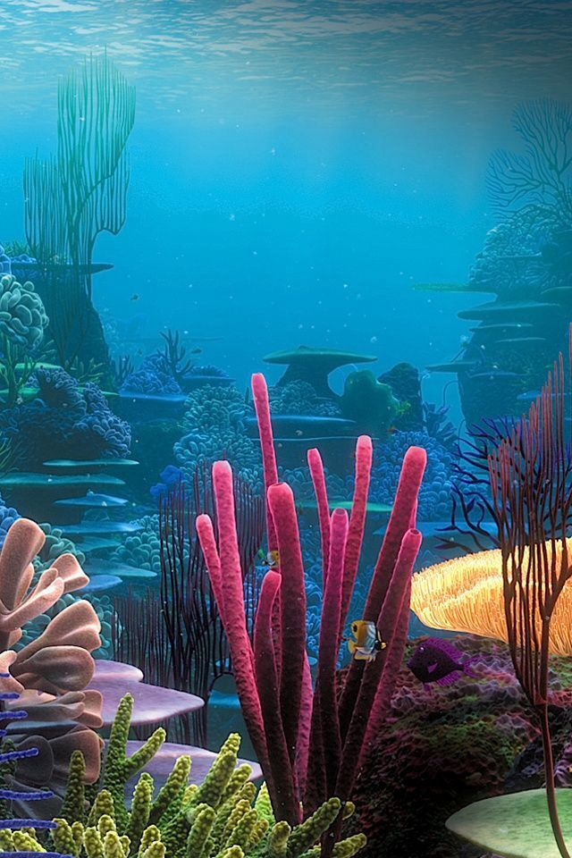 A beautiful garden under the sea ocean life underwater world underwater sea - Sea coral wallpaper ...