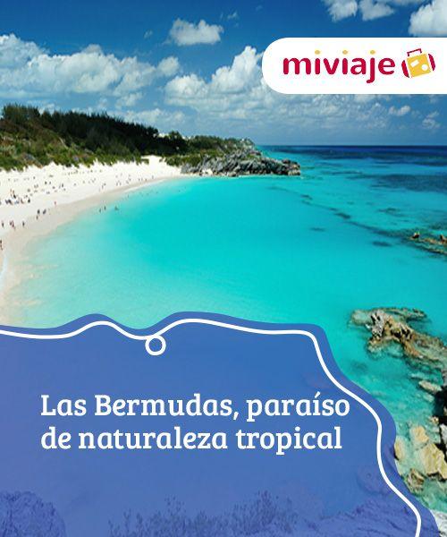 De Las De BermudasParaíso BermudasParaíso Naturaleza Naturaleza TropicalDestinos Las ikXuZPO