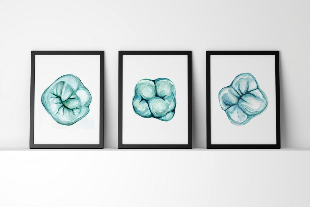 Occlusal View of Molar Watercolor Art Print Set - Dental Anatomy Art ...