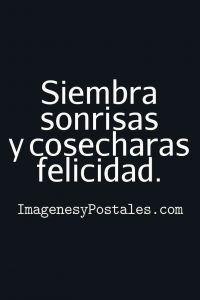 Frases De Felicidad Sembrar Sonrisas Frases De Felicidad