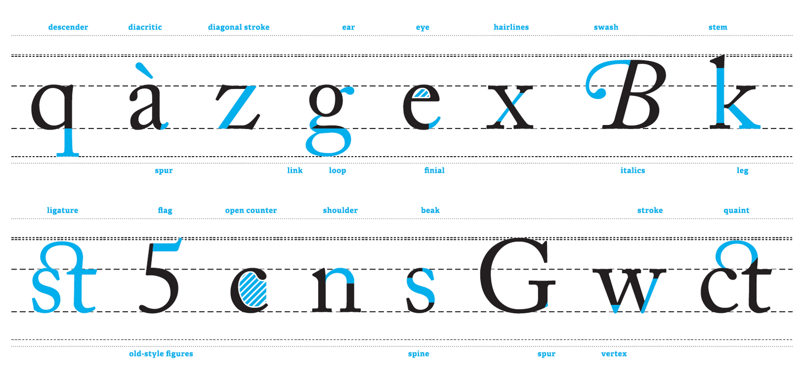 What Is A Line Anatomy Of Type Design Context T Y P E