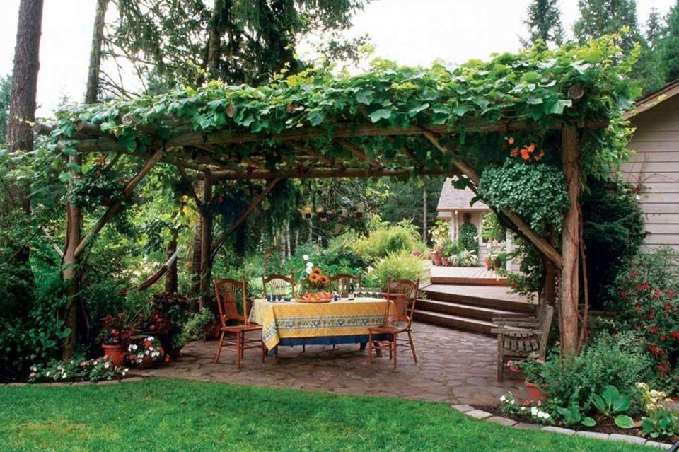 Hop garden amazing beer snob pinterest for Hops garden designs