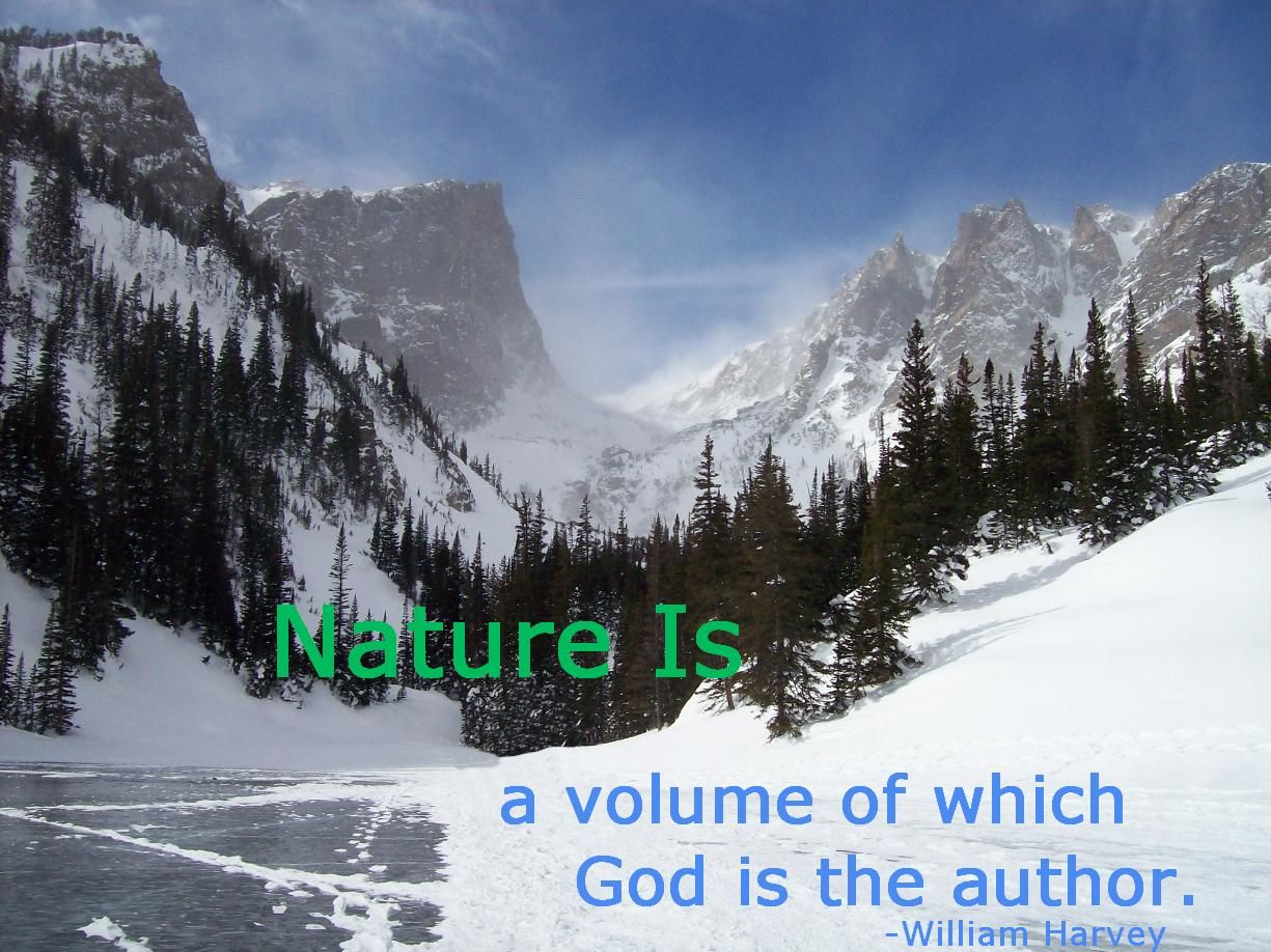 Sayings and Quotes » Nature Quotes