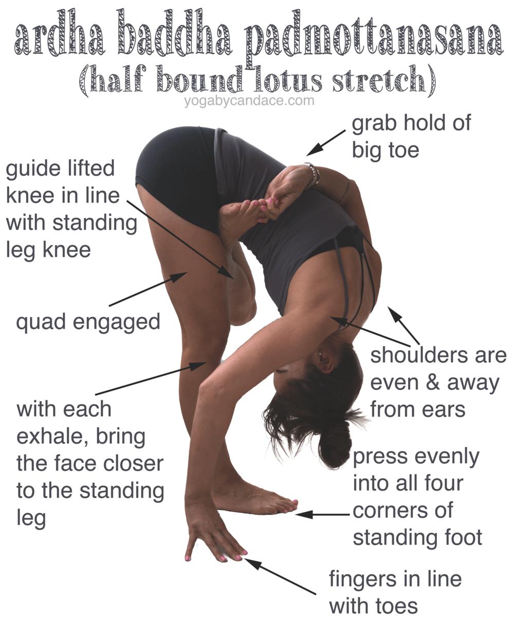 Ardha Baddha Padmottanasana Yogabycandace Yoga Tips Yoga Benefits Yoga Asanas