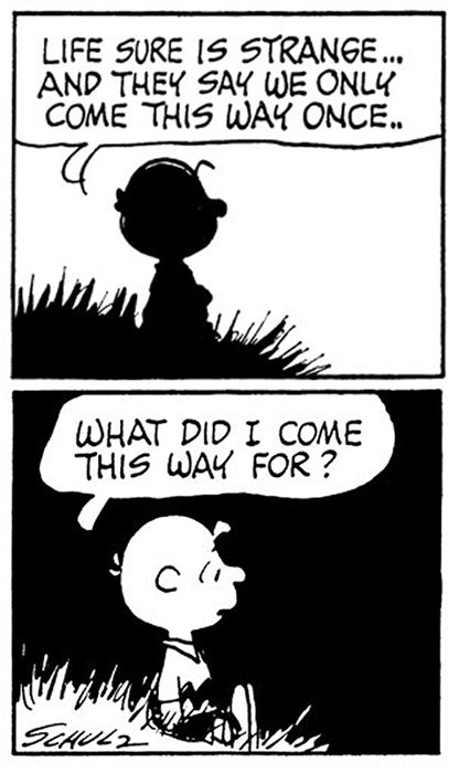 Charlie brown quotes about life inspiration pinterest for Charlie brown zitate