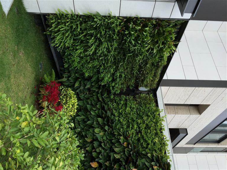 Livepanel Verticale Tuin Tuin Ideeen
