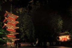 世界遺産の建造物がライトアップされる風景さぞきれいだろうと思いませんか 11月11日から13日までの日間ライトアップ日光が開催され秋の夜長にたたずむ世界遺産日光の社寺をライトアップするそうです  現代の技術で昔の建物をよりきれいに見ることができるなんてわくわくしてしまいます   tags[栃木県]