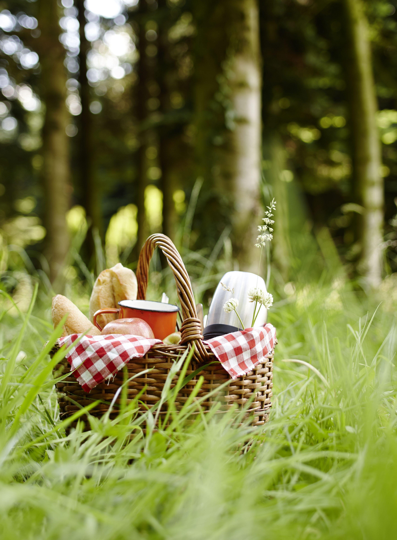 картинки пикник на траве нам фото рецепта