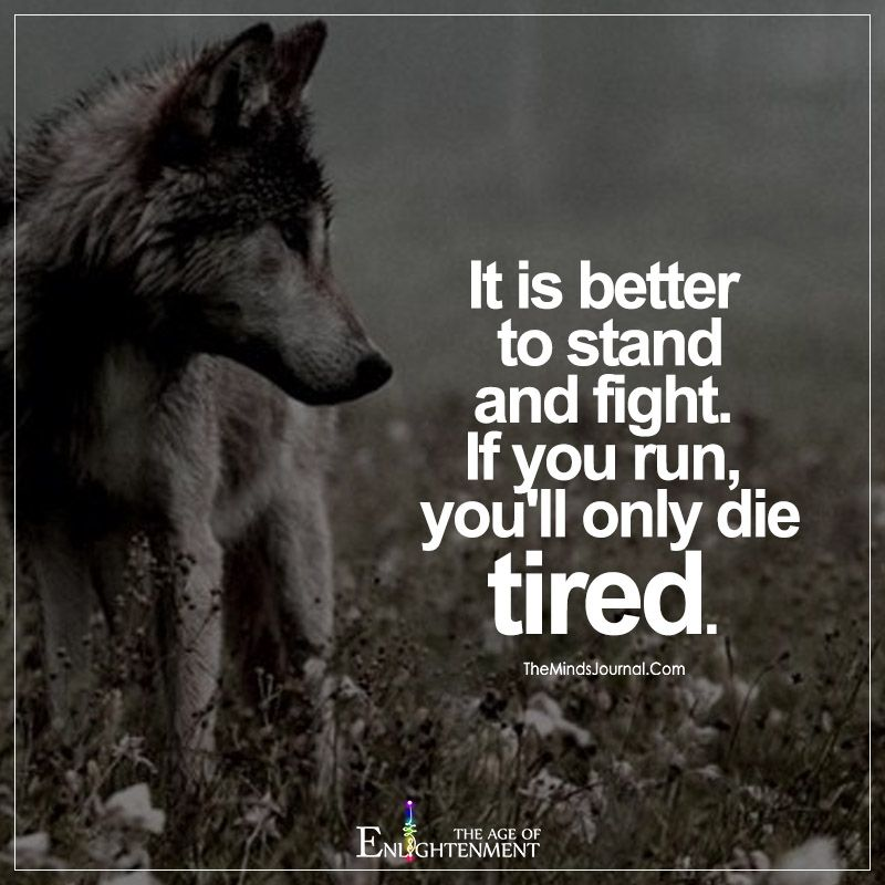 It Is Better To Stand And Fight Spiritual Seeker Fighting Quotes
