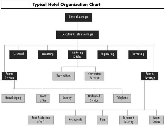 Pin By Lelde Bluke On Hotel In 2020 Hotel Resort Plan Organization Chart
