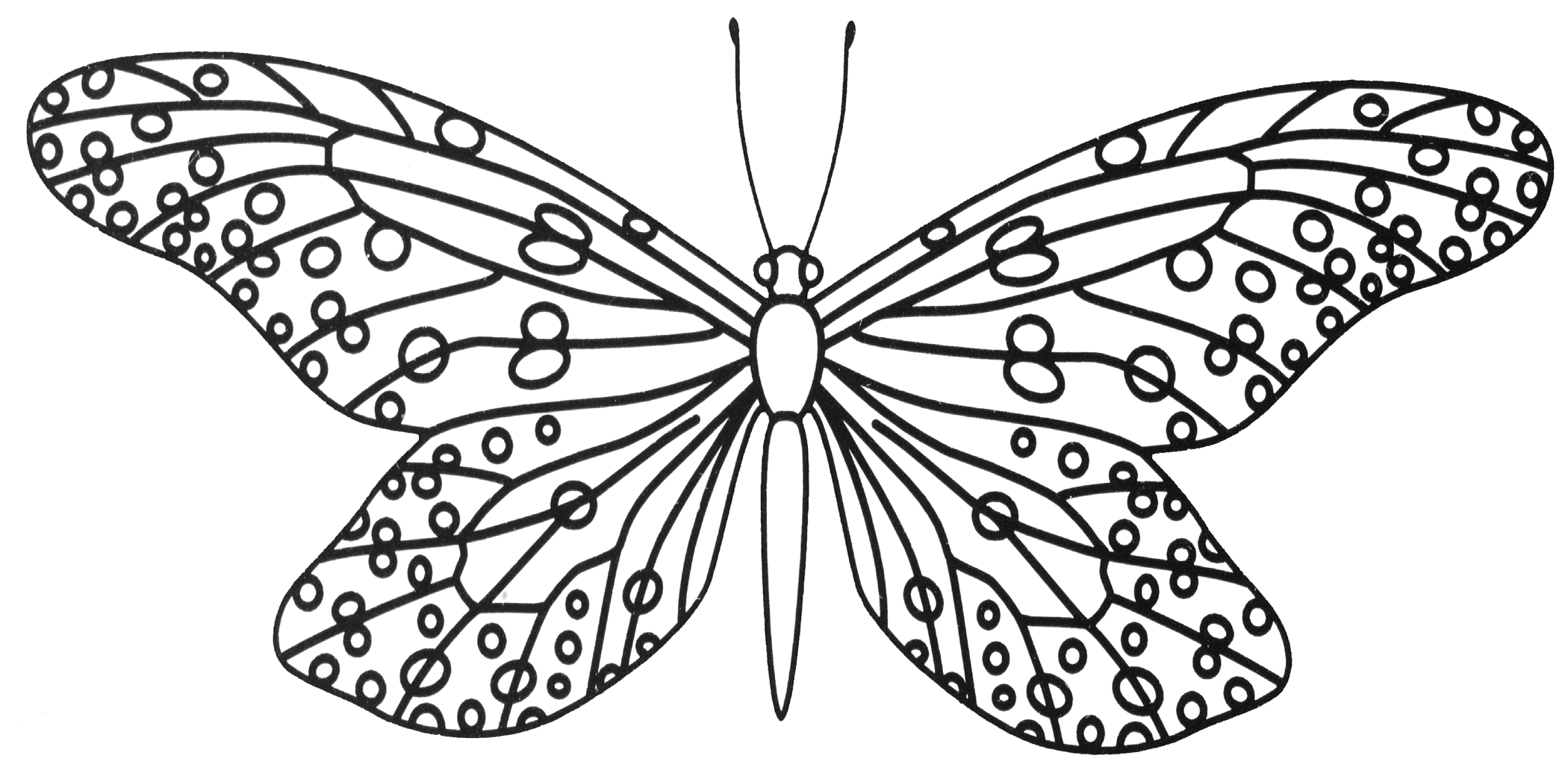 Butterfly Template 6 Png 2100 1048 Zentangle Flowers Butterfly Template Coloring Pages [ 1048 x 2100 Pixel ]