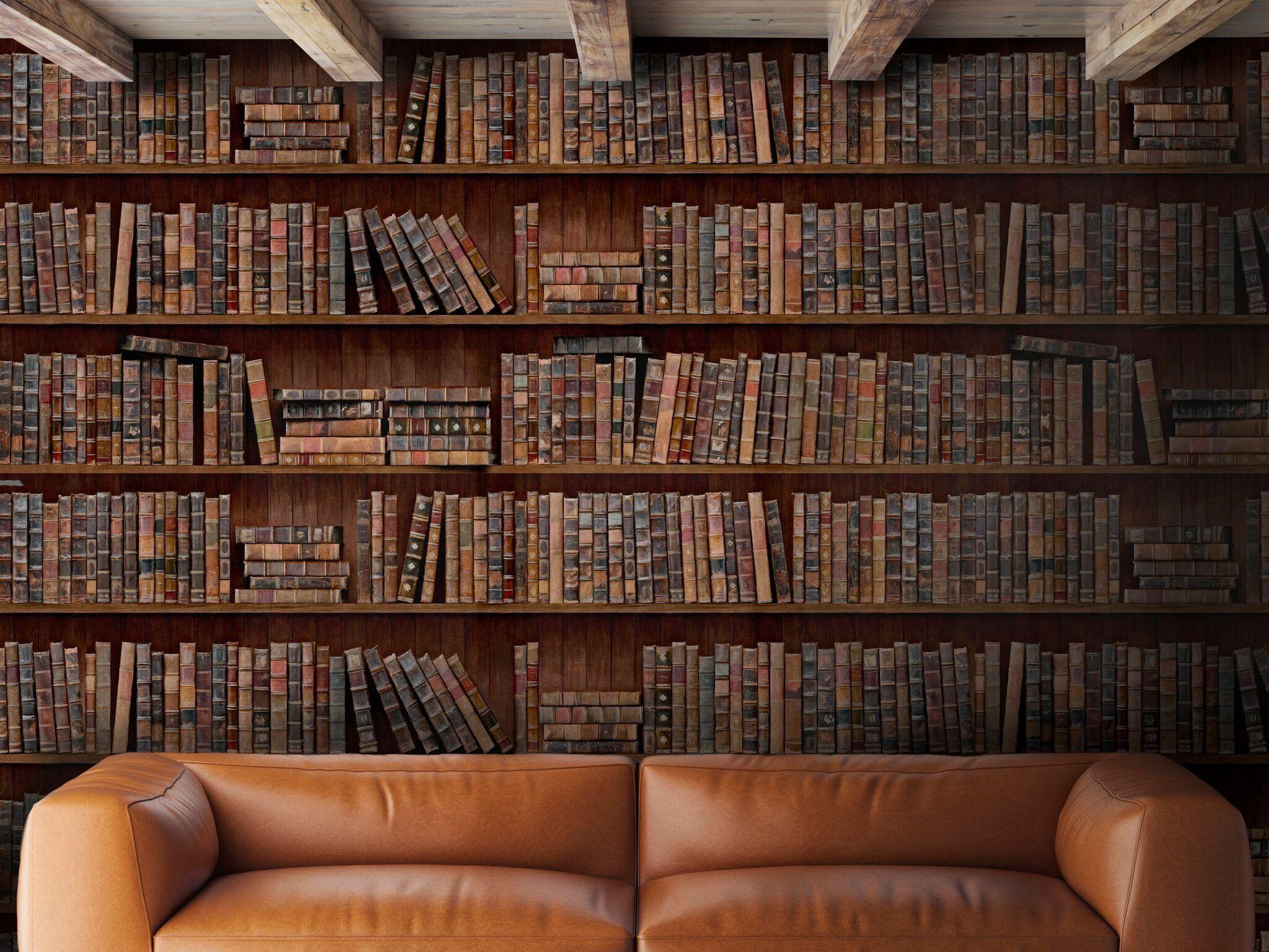 Mind The Gap Heavy Duty Book Shelf Effect Wallpaper