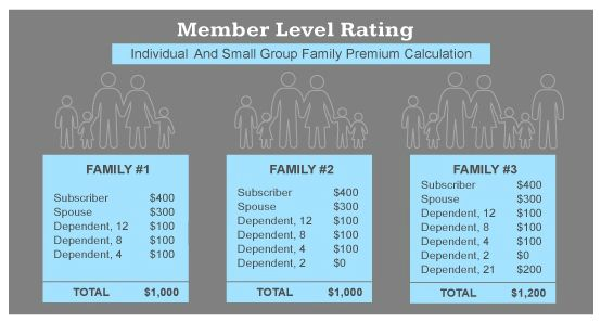 Member Level Rating Individual And Small Group Family Premium Calculation Small Groups Health Care Reform This