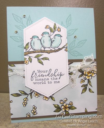 Too Cool Stamping #stampinup!cards