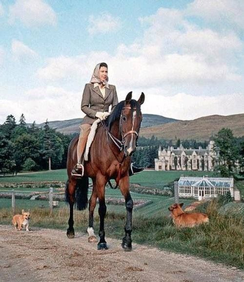 ALL ABOUT THE QUEEN ELIZABETH AND HER HORSES