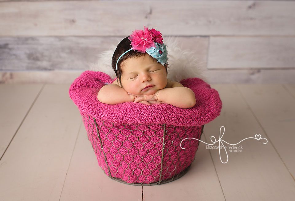 Newborn bucket pose newborn photography inspiration madison ct newborn photographer elizabeth frederick photography www elizabethfrederickphotography
