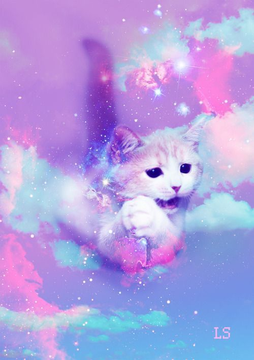 Galaxy Cat Cute Backgrounds Cat Wallpaper Kawaii Drawings