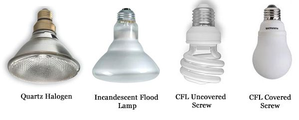 Learn About All The Different Types Of Light Bulbs Available And What To Look For During Your Next Pu Recessed Light Bulbs Recessed Lighting Types Of Lighting