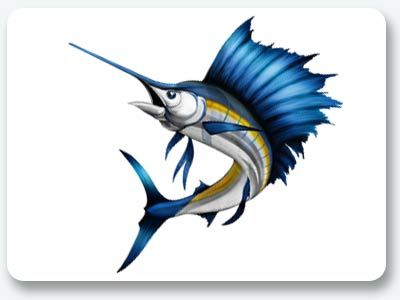 Fish Graphics Amp Stickers For Boats Fish Drawings